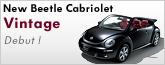 New Beetle Cabriolet Vintage site